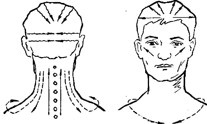 Точки, вдоль которых нужно массажировать шею