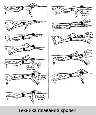 Техника плавания кролем при остеохондрозе