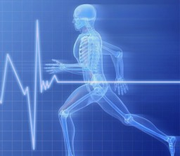 Физические нагрузки для здоровья