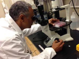 Врач поставит диагноз после проведения тестов на антитела