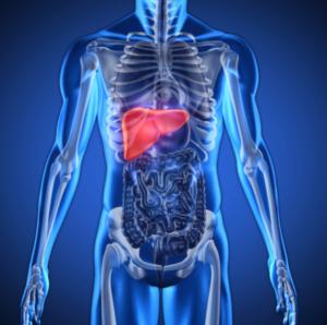Отсутствие антител указывает на то, что человек здоров