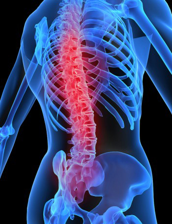 МРТ назначается при любых болях в позвоночнике