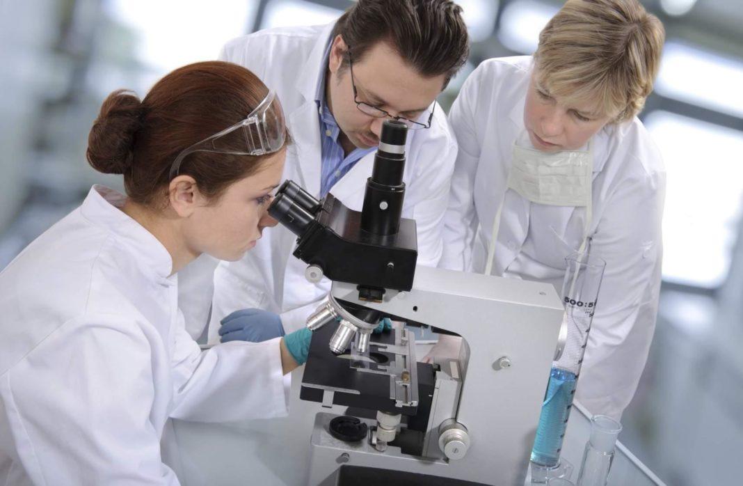 Новые методы лечения туберкулёза: к чему пришли ученые?