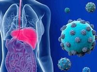 Вирус гепатит С
