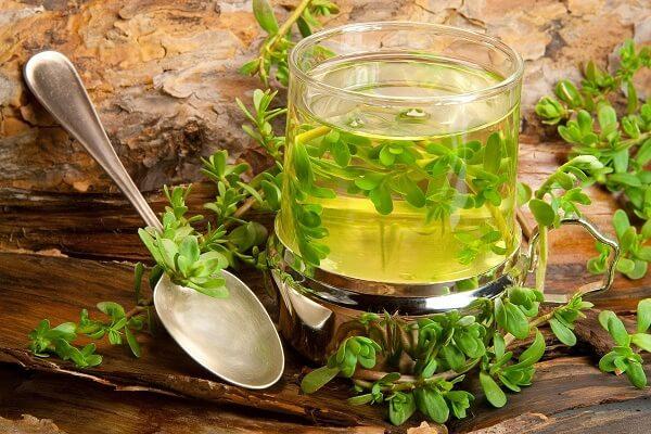 Травяной настой для лечения остеохондроза