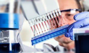 ДНК и ПЦР вируса гепатита B