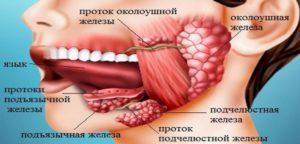 Симптомы и лечение плеоморфной аденомы околоушной слюнной железы