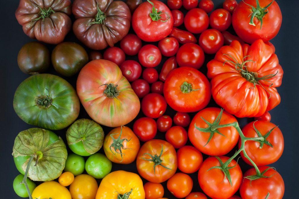 Разные виды помидоров