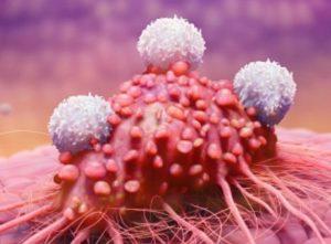 ложные результаты анализа возможны при наличии злокачественных образований в организме