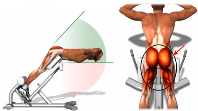 Тренировка ягодичных мышц с помощью гиперэкстензии
