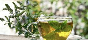 Какой успокаивающий чай для грудничков лучше выбрать